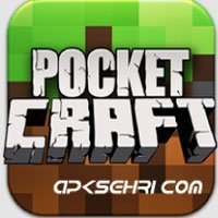 Pocket Craft Survivor Mode