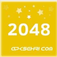 2048 Numara Puzzle Oyunu